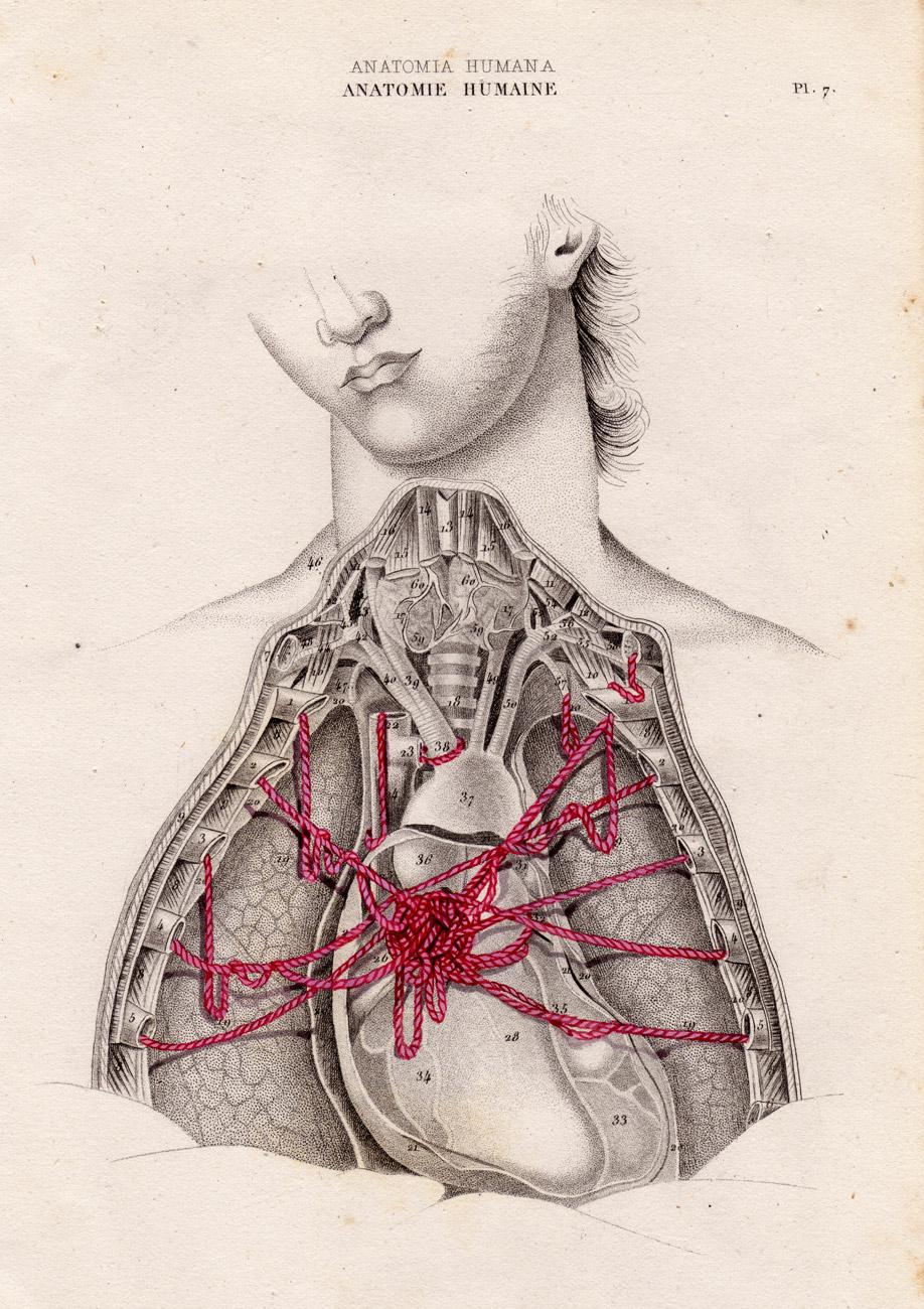 una singular anatomia... : Hombre Sin Cabeza / Manuel Antonio ...